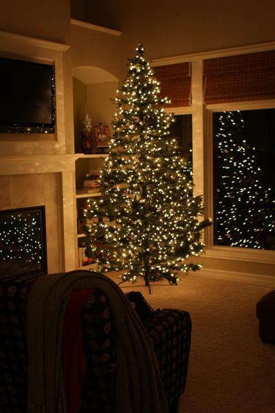 Christmas tree005 (Medium)